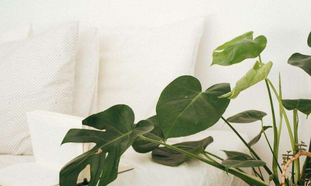 Ihonhoidon päivitys - ihonhoito syksyllä ja talvella